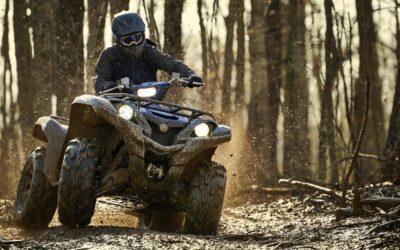 Grizzly 700 EPS SE: puissant et robuste pour le travail ou les loisirs.